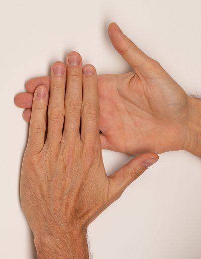 Handpola-links