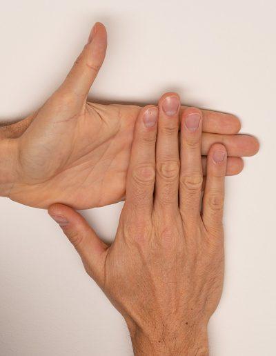 Handpola-rechts